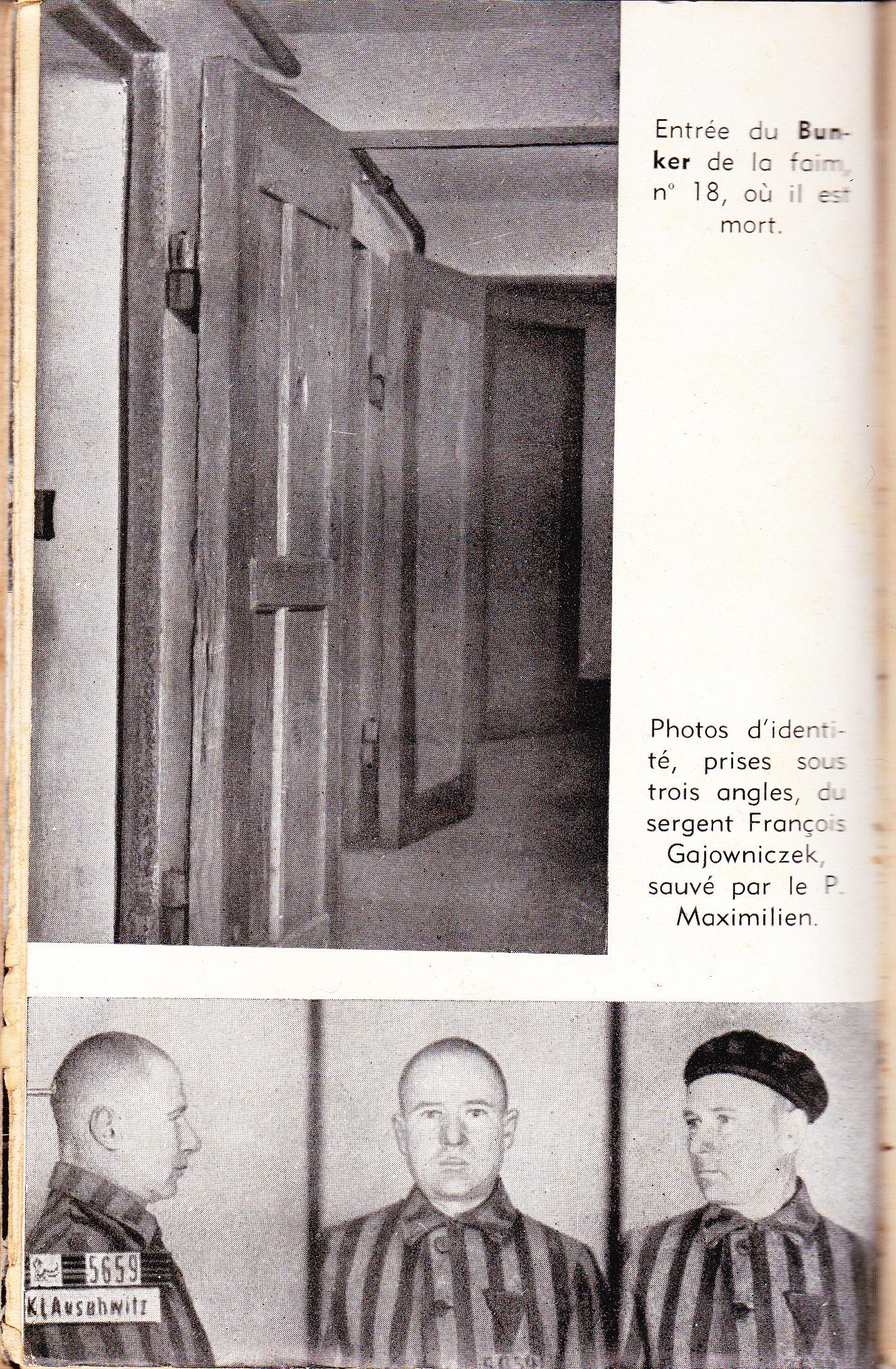 martyr pologne saint maximilien marie kolbe lepapillondeslivrescerclerenevigo. Black Bedroom Furniture Sets. Home Design Ideas